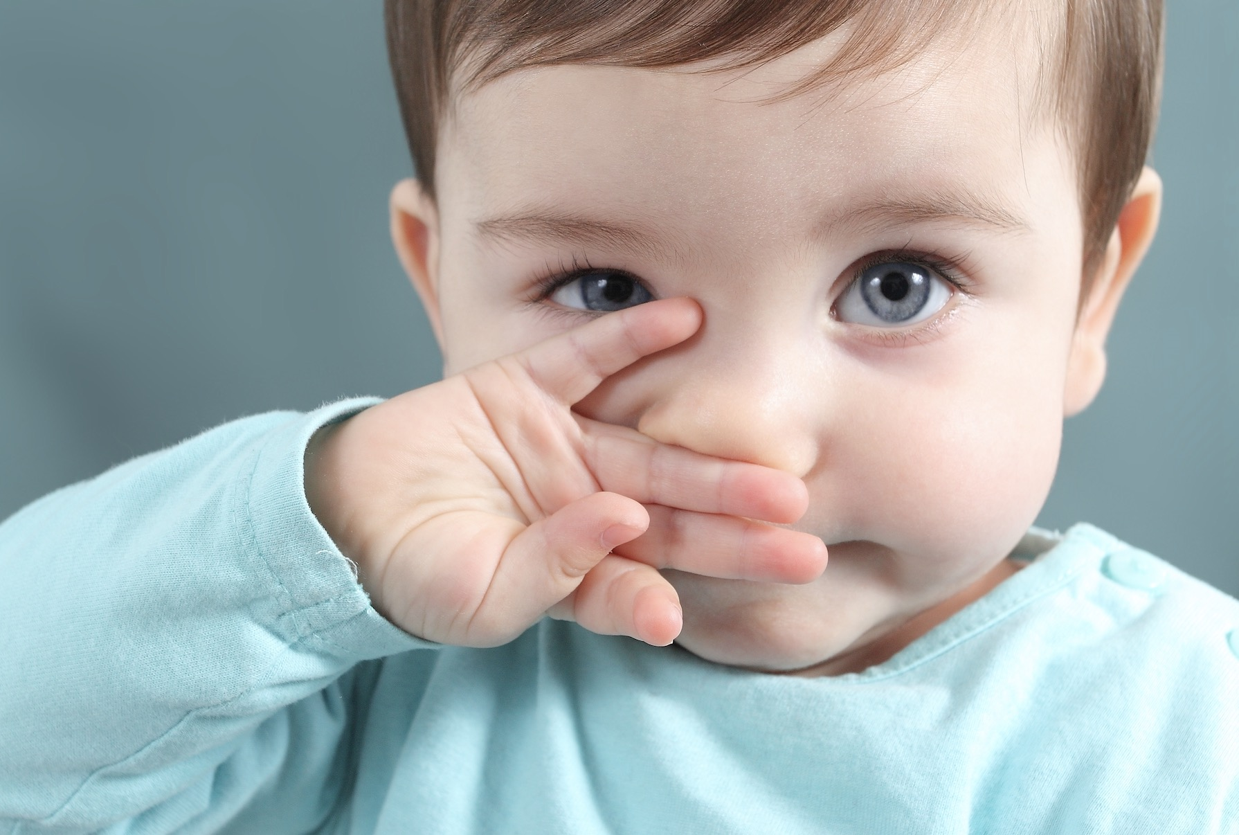 alergia primaveral bebes
